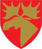 Namsos kommunevåpen, alias ELG